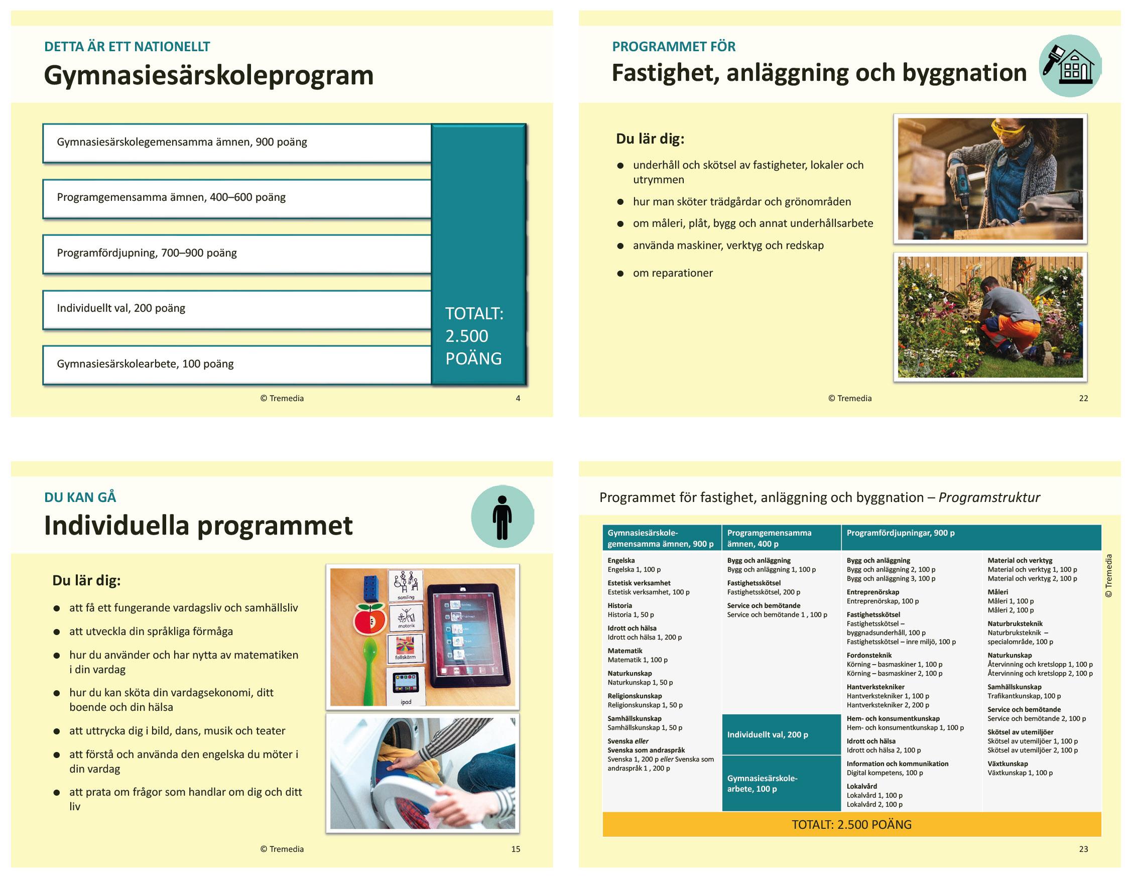 Fyra olika slides från presentationen