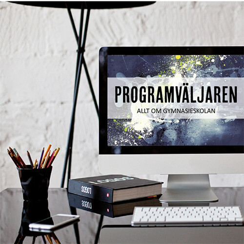 PresentationPV_2017