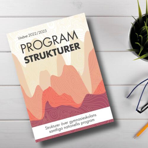 Bild på Programstrukturer omslag